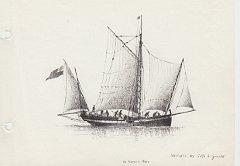 disegni di barche - disegno di navicello genovese