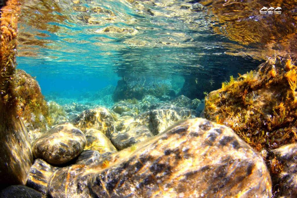 Foto di fondale marino