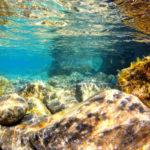 Fotografia artistica - fondale marino