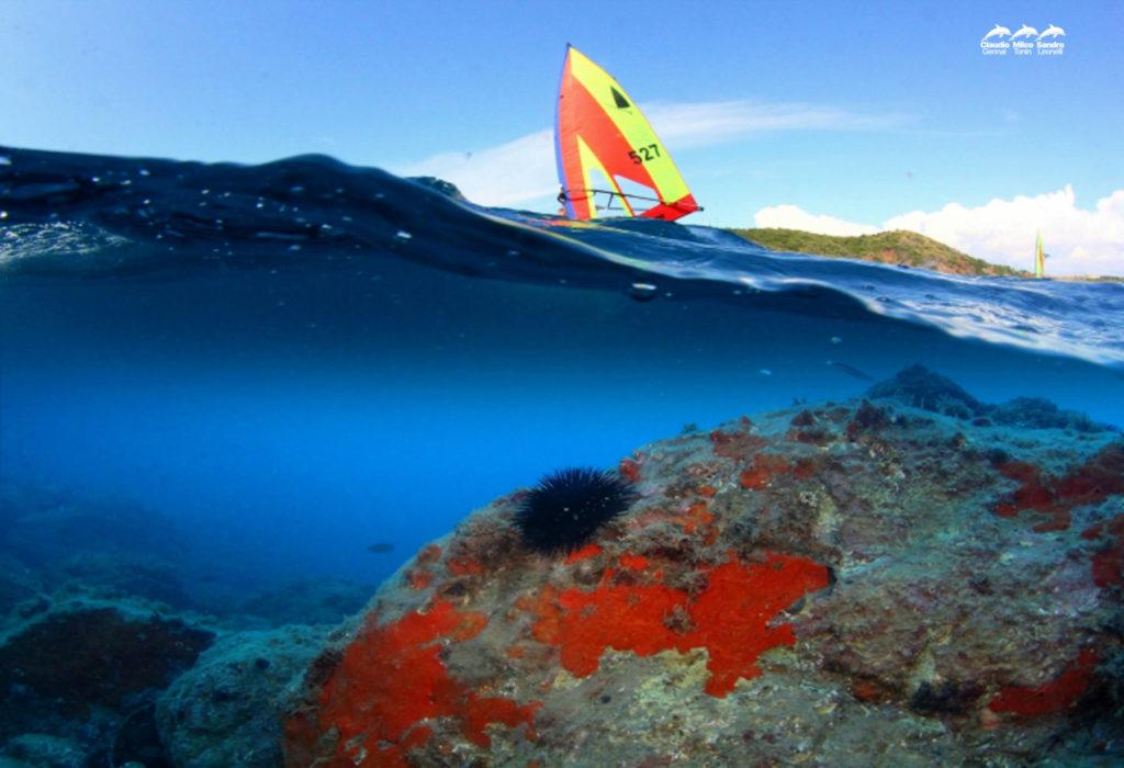 Foto di surf scattata a mezz'acqua