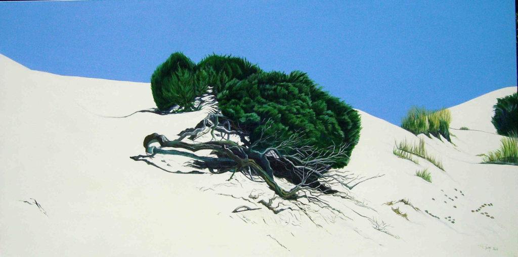 Spiagge della Sardegna - quadro intitolato zona d'ombra-2011- 60x120 acrilico su tela - autrice Chiara Pruna
