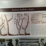 Tavola al museo navale di Danzica